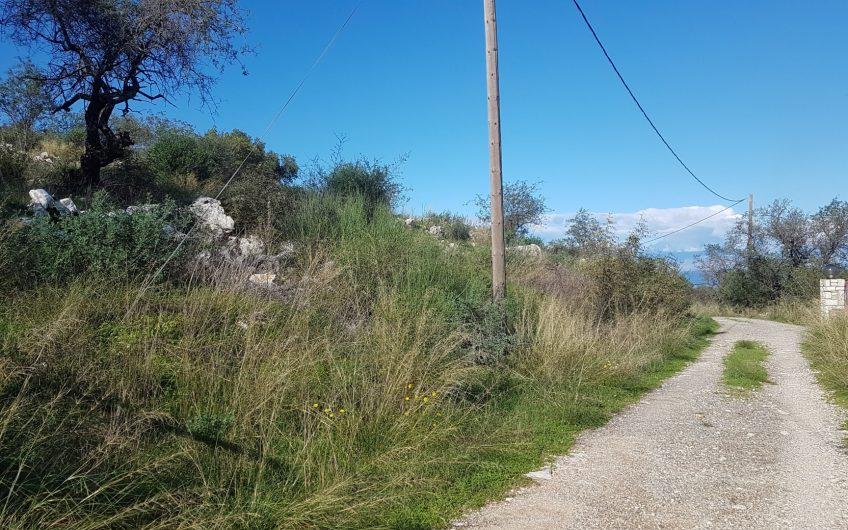 Three buildable plots for sale