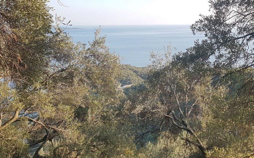 Plot above Kalami beach